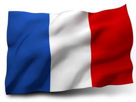 Übersetzungen in Französisch
